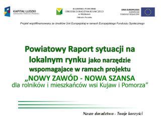 Powiatowy Raport sytuacji na lokalnym rynku  jako narzędzie  wspomagajace  w ramach projektu