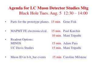 Agenda for LC Muon Detector Studies Mtg     Black Hole Tues. Aug. 5  12:30 – 14:00