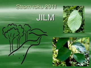 Strom roku 2011