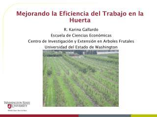 Mejorando la Eficiencia del Trabajo en la Huerta