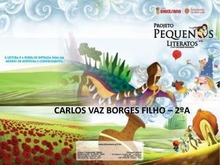 CARLOS VAZ BORGES FILHO –  2ºA
