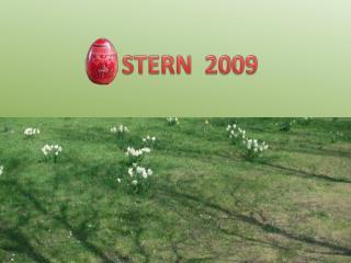 STERN  2009
