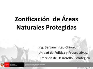 Ing. Benjamín Lau Chiong Unidad de Política y Prospectivas. Dirección de Desarrollo Estratégico