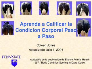 Aprenda a Calificar la Condicion Corporal Paso  a Paso