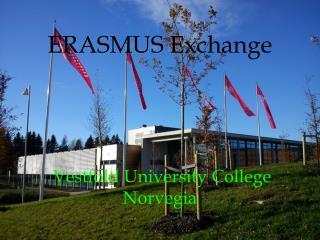 ERASMUS Exchange Vestfold  University College Norvegia