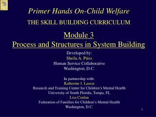 THE SKILL BUILDING CURRICULUM  Module 3 Process and Structures in System Building