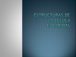 Estructuras de la c�lula eucariota