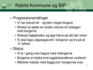 Rebild Kommune og BIP