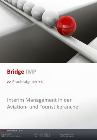Bridge IMP >>  Praxisratgeber  << Interim Management in der Aviation- und Touristikbranche