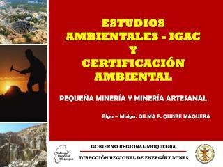 GOBIERNO REGIONAL MOQUEGUA  DIRECCI�N REGIONAL DE ENERG�A Y MINAS