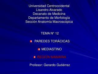 TEMA N° 12  PAREDES TORÁCICAS MEDIASTINO REGION MAMARIA Profesor: Gerardo Gutiérrez