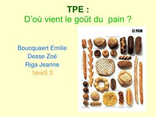 TPE : D�o� vient le go�t du  pain ?