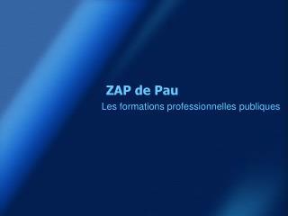 ZAP de Pau
