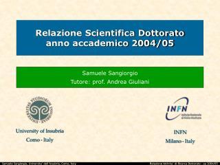 Relazione Scientifica Dottorato anno accademico 2004/05