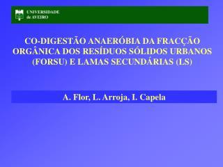 A. Flor, L. Arroja, I. Capela