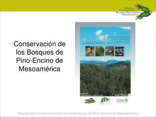 Conservaci n de los Bosques de Pino-Encino de Mesoam rica