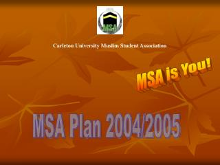 MSA Plan 2004/2005