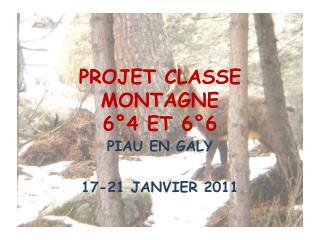 PROJET CLASSE MONTAGNE 6°4 ET 6°6