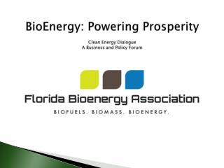 BioEnergy : Powering Prosperity Clean Energy Dialogue A Business and Policy Forum