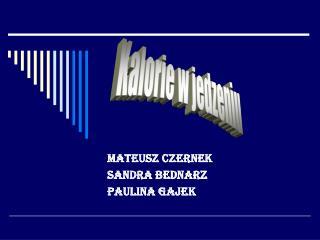 Mateusz Czernek Sandra Bednarz Paulina Gajek