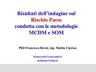 Risultati dell'indagine sul  Rischio Paese condotta con le metodologie MCDM e SOM