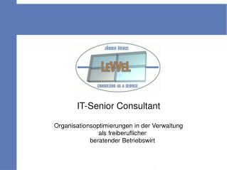 IT-Senior Consultant