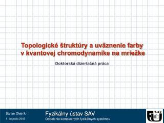 Topologické štruktúry a uväznenie farby  v kvantovej chromodynamike na mriežke