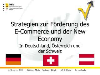 Strategien zur Förderung des E-Commerce und der New Economy