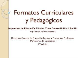 Formatos Curriculares y Pedagógicos