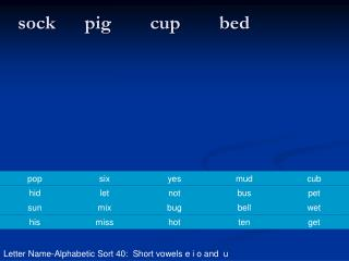 sock      pig        cup        bed