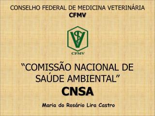 """""""COMISSÃO NACIONAL DE  SAÚDE AMBIENTAL"""" CNSA"""