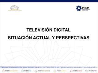 TELEVISIÓN DIGITAL SITUACIÓN ACTUAL Y PERSPECTIVAS