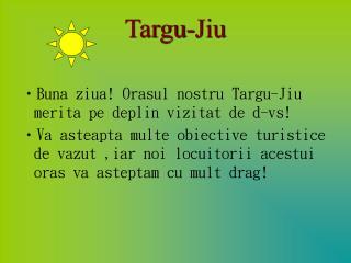 Targu-Jiu