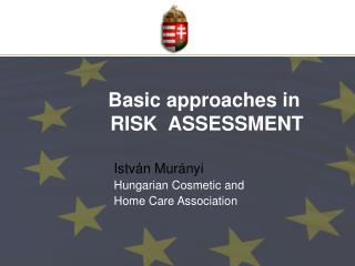 Basic approaches in  RISK  ASSESSMENT