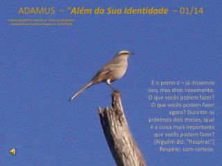 """ADAMUS  – """" Além da Sua Identidade   – 01/14"""