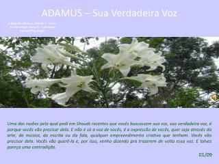 ADAMUS – SOBRE A VOZ