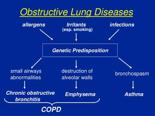 Obstructive Lung Diseases