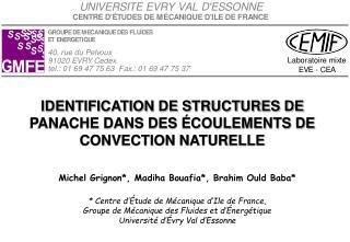 IDENTIFICATION DE STRUCTURES DE PANACHE DANS DES ÉCOULEMENTS DE CONVECTION NATURELLE