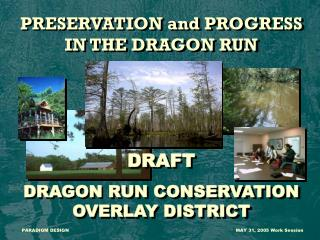 PRESERVATION and PROGRESS IN THE DRAGON RUN DRAFT DRAGON RUN CONSERVATION OVERLAY DISTRICT