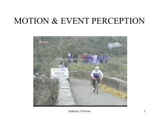 MOTION  EVENT PERCEPTION