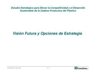 Visión Futura y Opciones de Estrategia