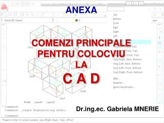 ANEXA COMENZI PRINCIPALE PENTRU COLOCVIU  LA C A D