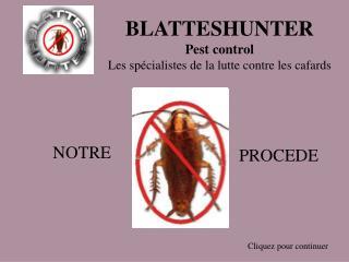 BLATTESHUNTER Pest control Les spécialistes de la lutte contre les cafards