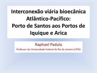 Interconexão viária bioecânica  Atlântico-Pacífico:  Porto de Santos aos Portos de Iquique e Arica