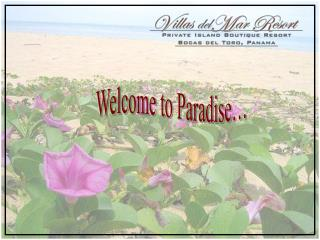 Welcome to Paradise…