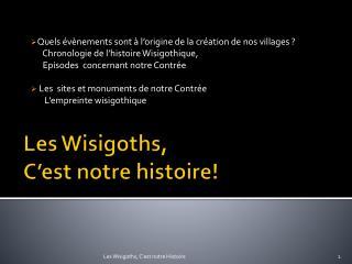 Les Wisigoths,  C'est notre histoire!
