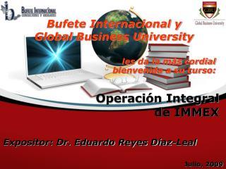 Operaci n Integral de IMMEX
