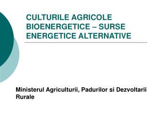 CULTURILE AGRICOLE BIOENERGETICE – SURSE ENERGETICE ALTERNATIVE