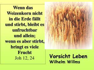 Vorsicht Leben Wilhelm Willms