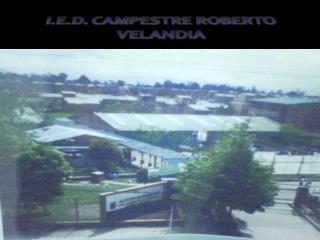 I.E.D. CAMPESTRE ROBERTO VELANDIA